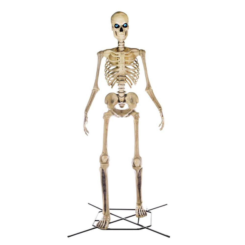 12 Foot Skeleton Stand