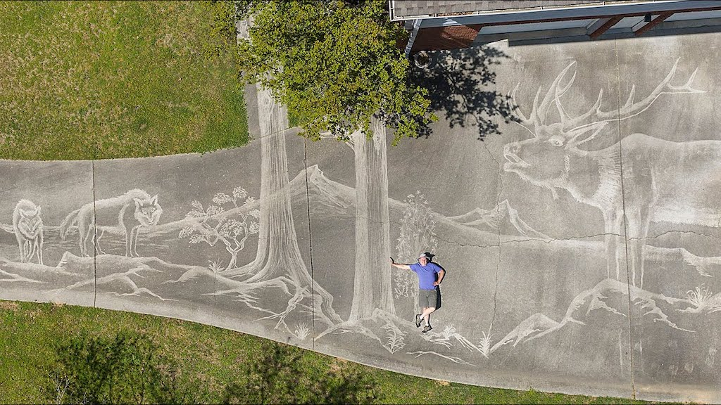 Photographer Uses a Pressure Washer to Create a Gorgeous Wildlife Mural On His Alabama Driveway