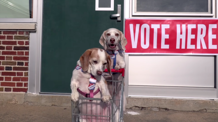 Maymo and Penny Shopping Cart Voting Adventure
