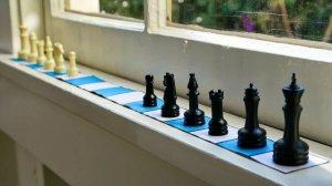 One Dimesional Chess Window
