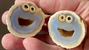 Cookie Monster Agate