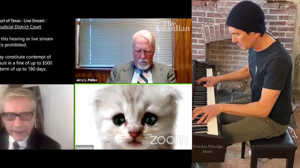 Brandon Ethridge Cat Filter Zoom