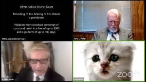 Cat Lawyer Zoom