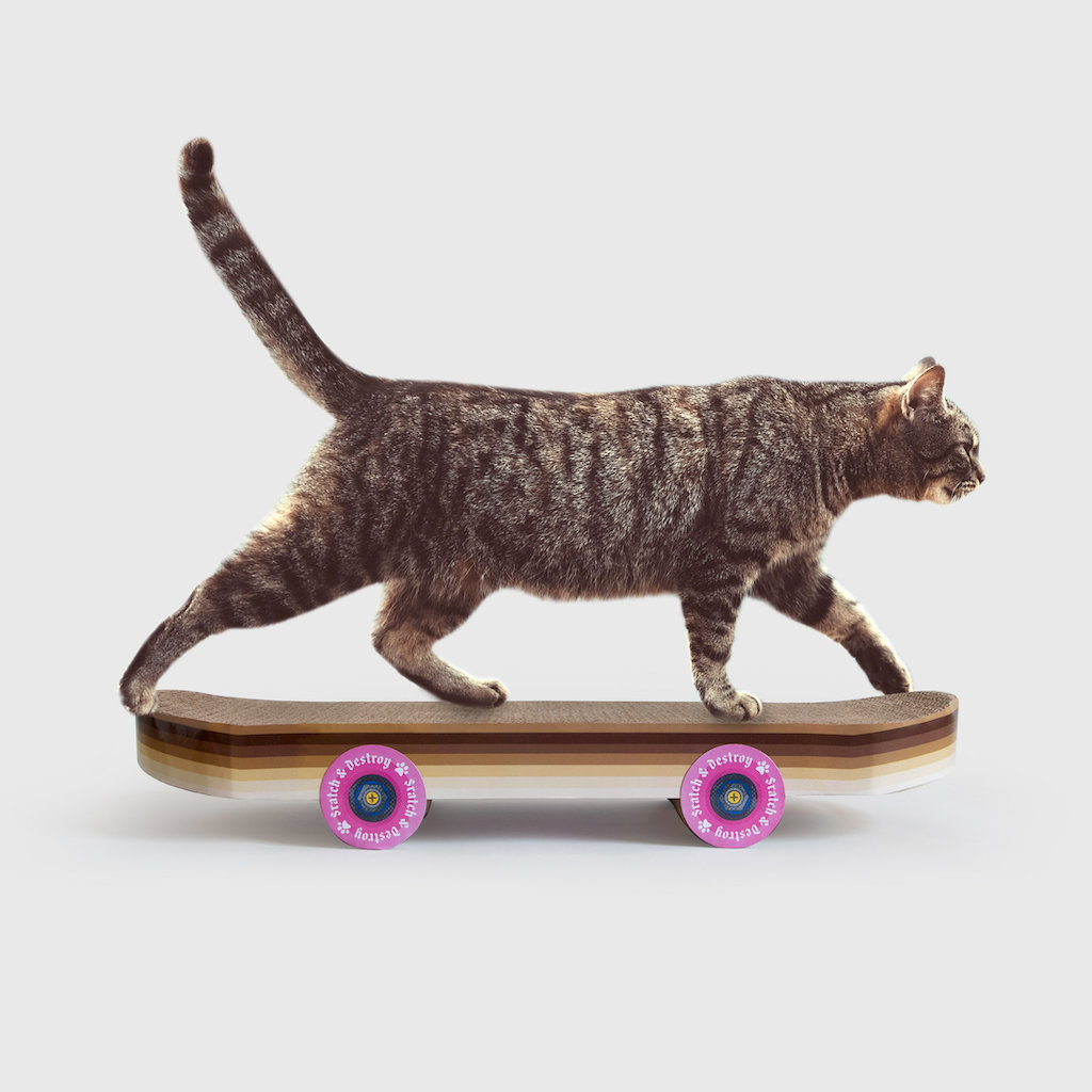 Cat Skateboard Scratcher Side