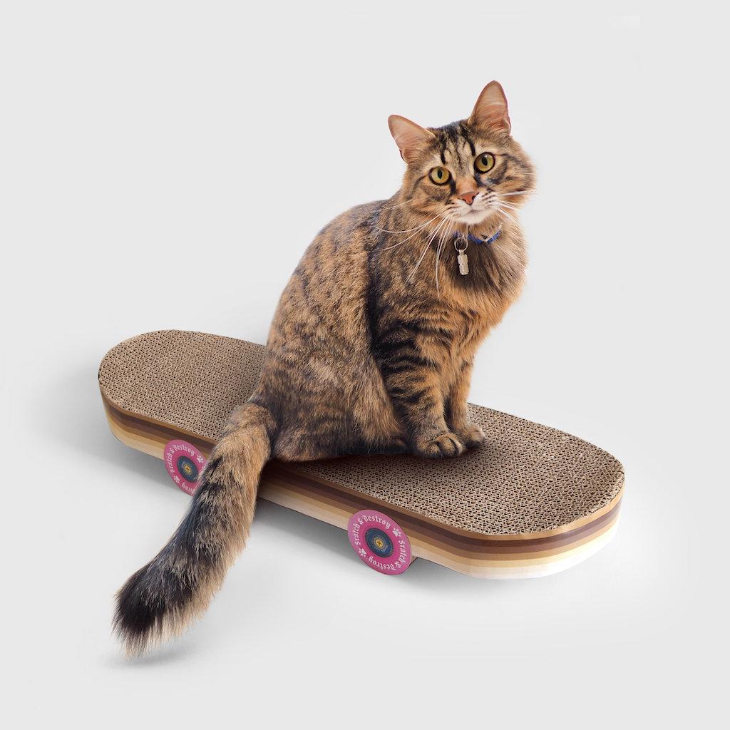 Cat Skateboard Scratcher