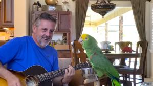 Parrot Sings
