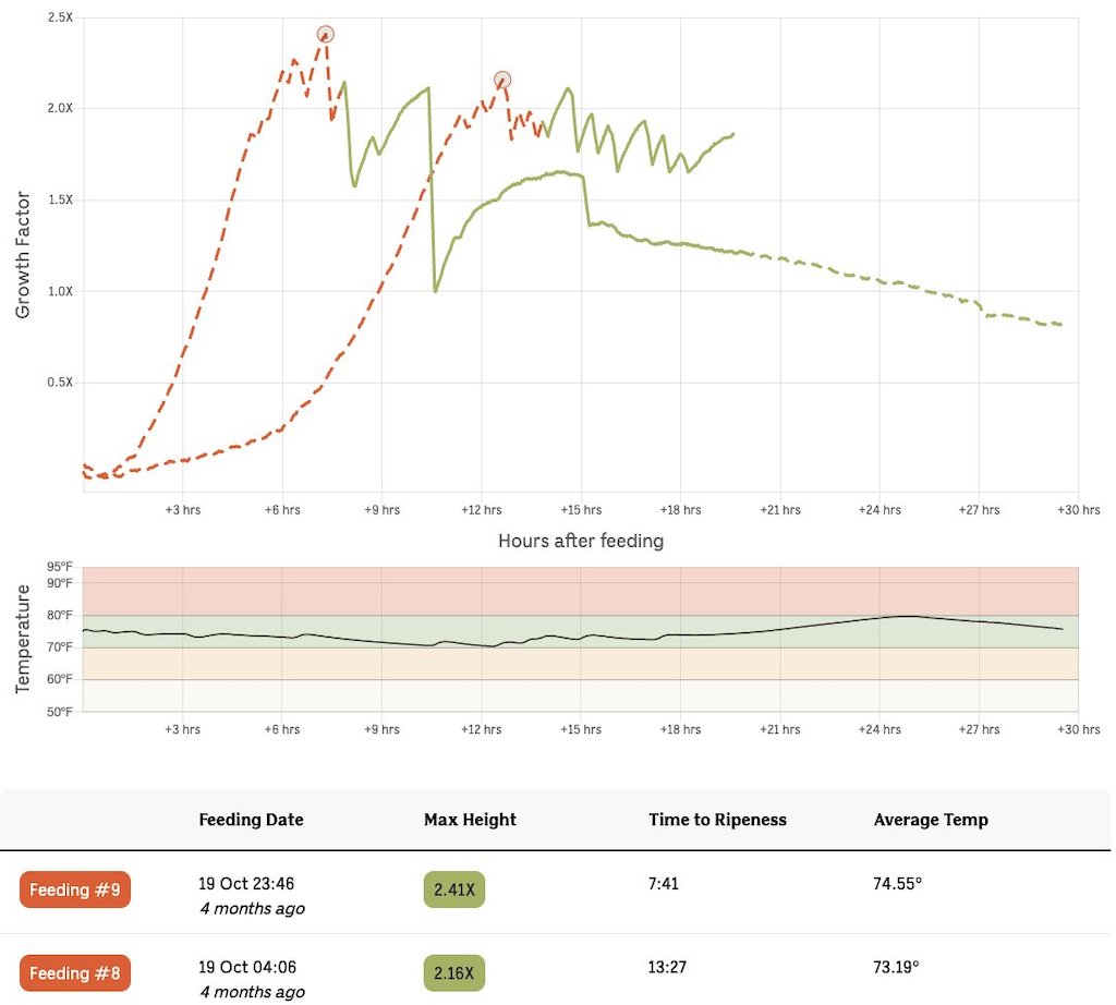 Breadwinner Data