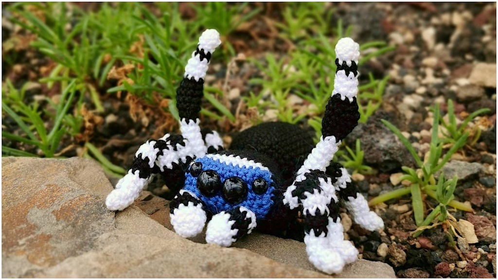 Crocheted Peacock Spider