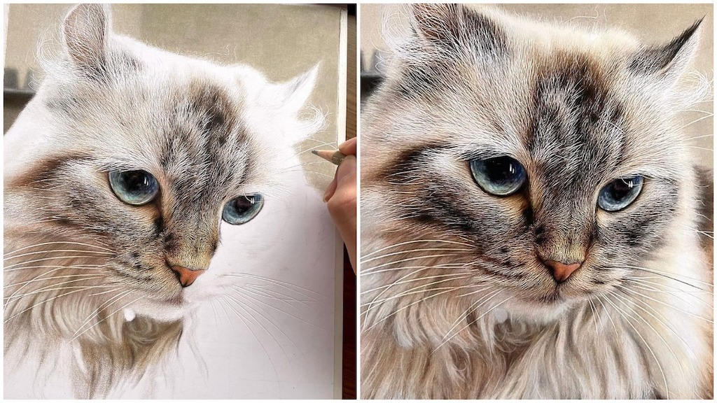 Photorealistic Colored Pencil Drawings of Cat Faces