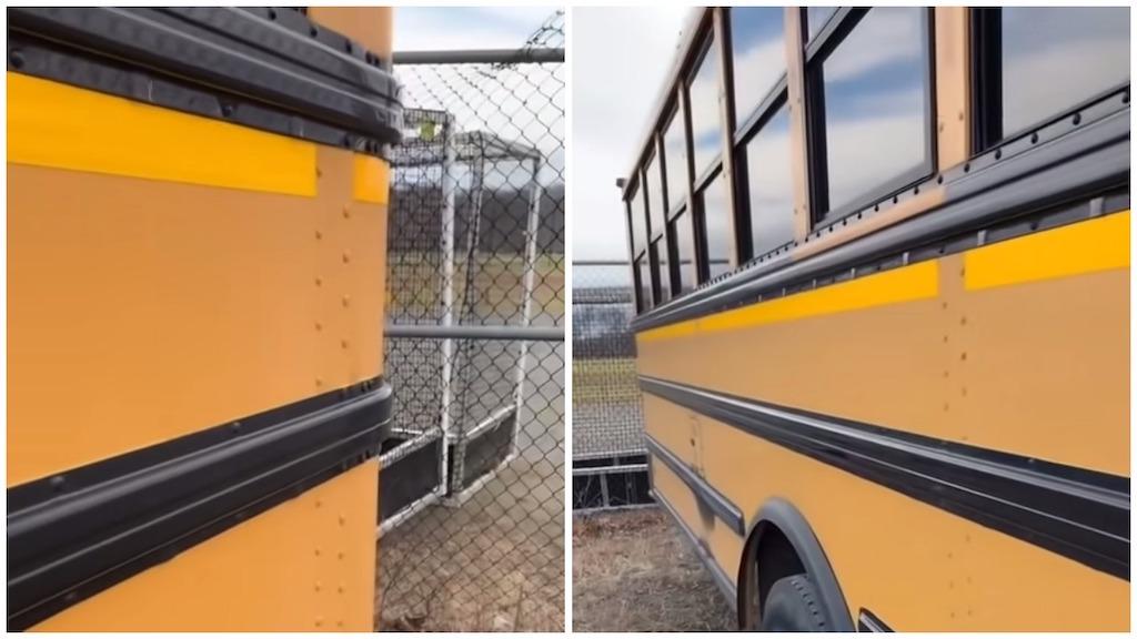 Three Black Lines on School Buses