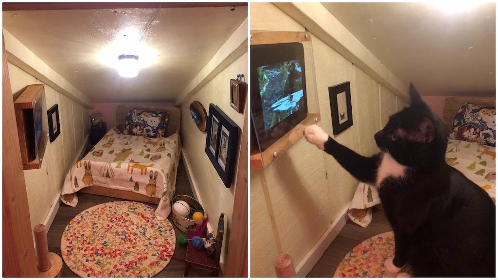 Cat Tiny Home Dormer Space