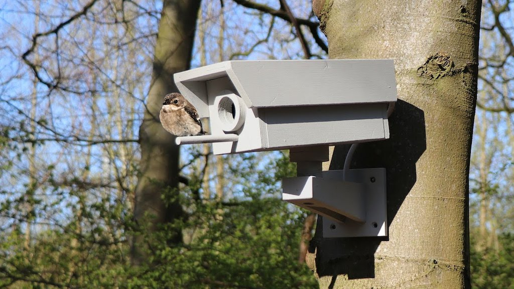 How to Build a Fake Security Camera Birdhouse