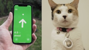 Apple Air Tags on Cat