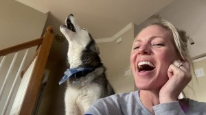 Dog Sings Sweet Child o Mine With Human