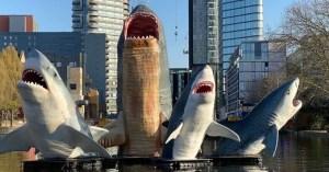 London Sharks