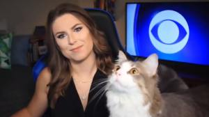 Cat interrupts News Broadcast to Stare at a Fly