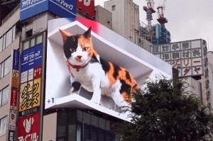 3D Calico Cat Billboard Japan