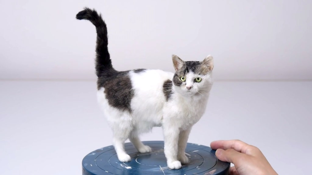 How to Make a Realistic Cat From Felted Wool
