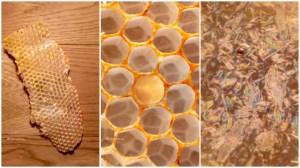 Macro of Honeycomb