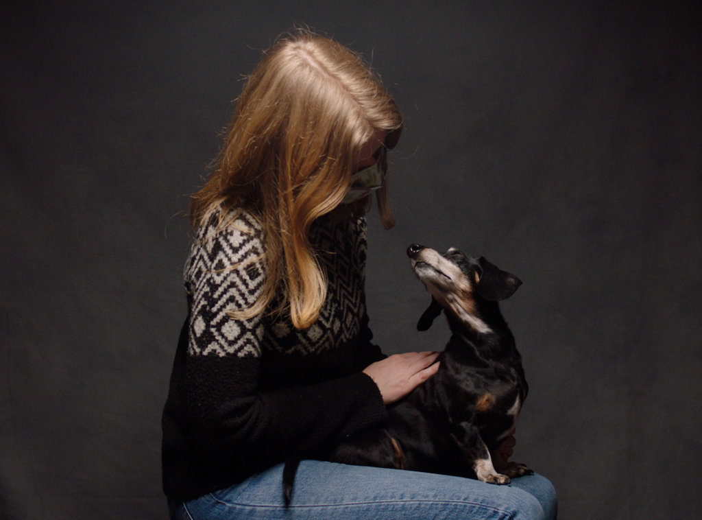 Talking Dog Big Shins Doxy