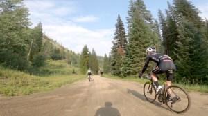 Bicyclists Race Moose in Colorado