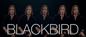 Blackbird Low Bass Cover