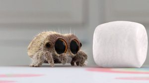 Lucas the Spider Marshmallow