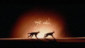 Night Watch Animation