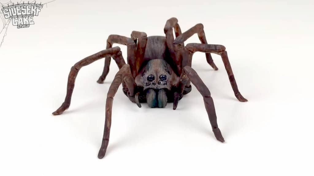 Creepy Wolf Spider Cake