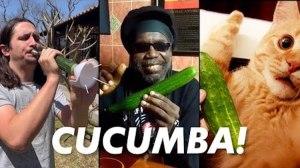 Cucumba Kiffness