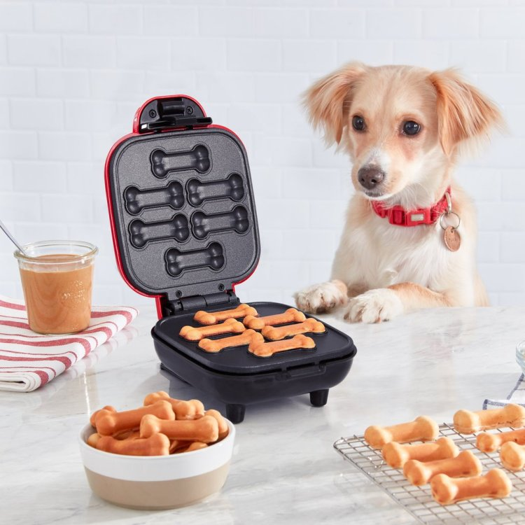 Dog With Dog Treat Machine