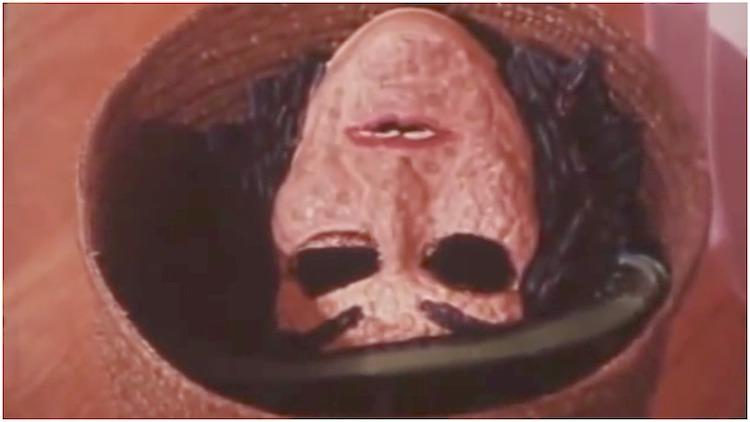 Halloween Safety Video