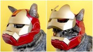 Iron Man Helmet for Cat