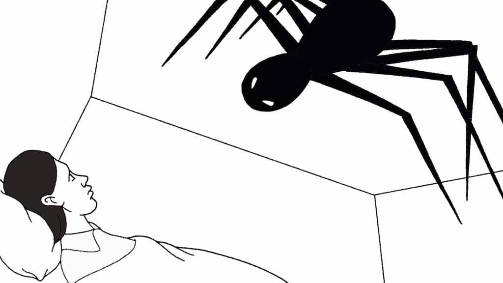 Mental Health Spider