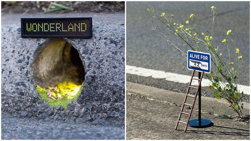 Tiny Street Signs for Tiny Circumstances