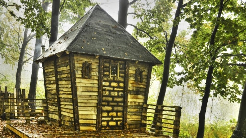 House Made Out of Pallets