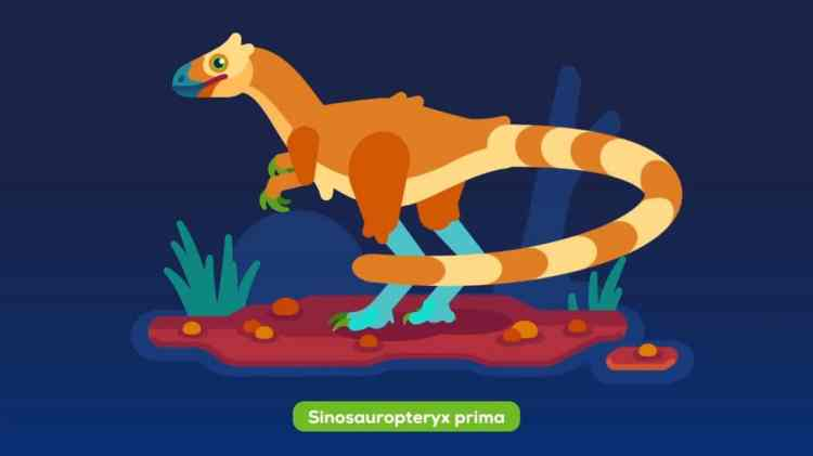 What Dinosaurs Actually Look Like Sonauropterix