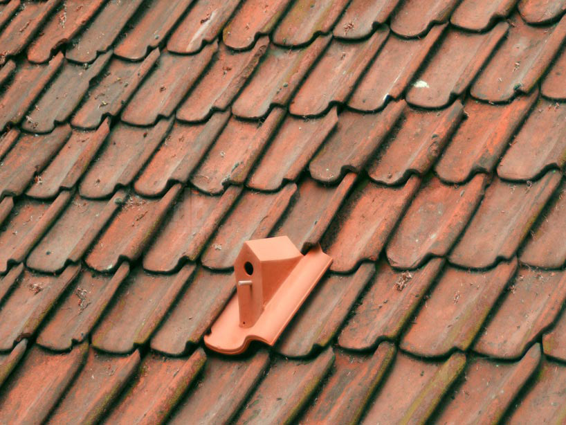 Birdhouse Rooftile by Klaas Kuiken