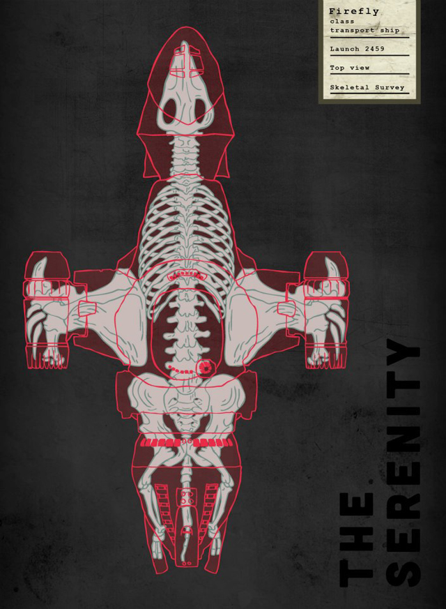 Spaceship Skeletal Survey: The Serenity by Josh Lane