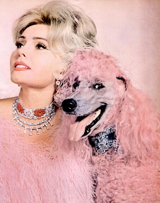 Zsa Zsa Gabor poses with her pink poodle