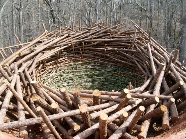 Clay Nest by Nils Udo