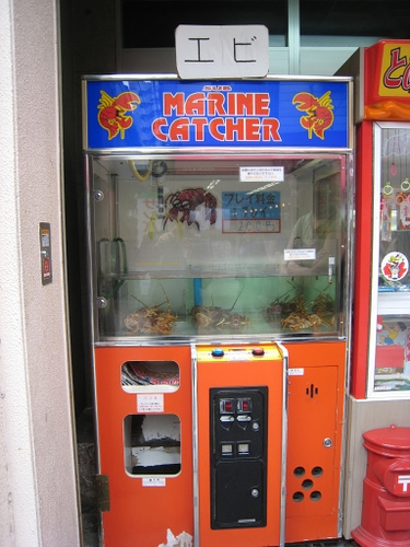 Claw Machines to Grab & Win Live Lobsters