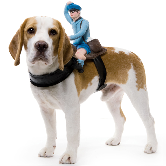 Dog Riders Mailman Costume