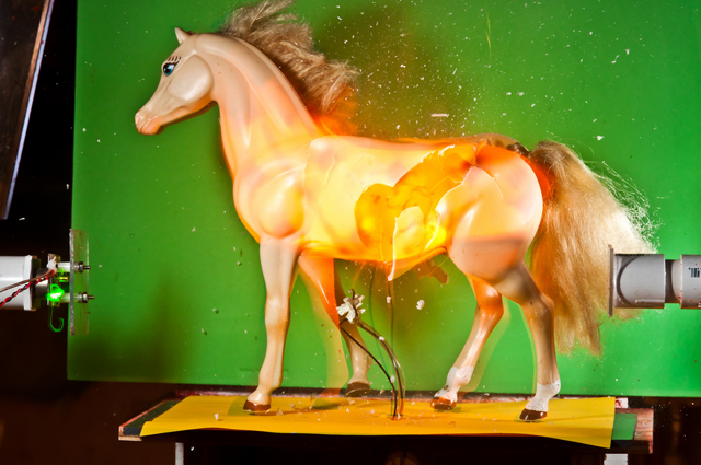 Just For Show Horse by Alan Sailer