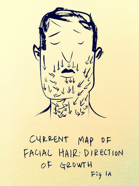 Current Map of Facial Hair: Direction of Growth by Ric Carrasquillo