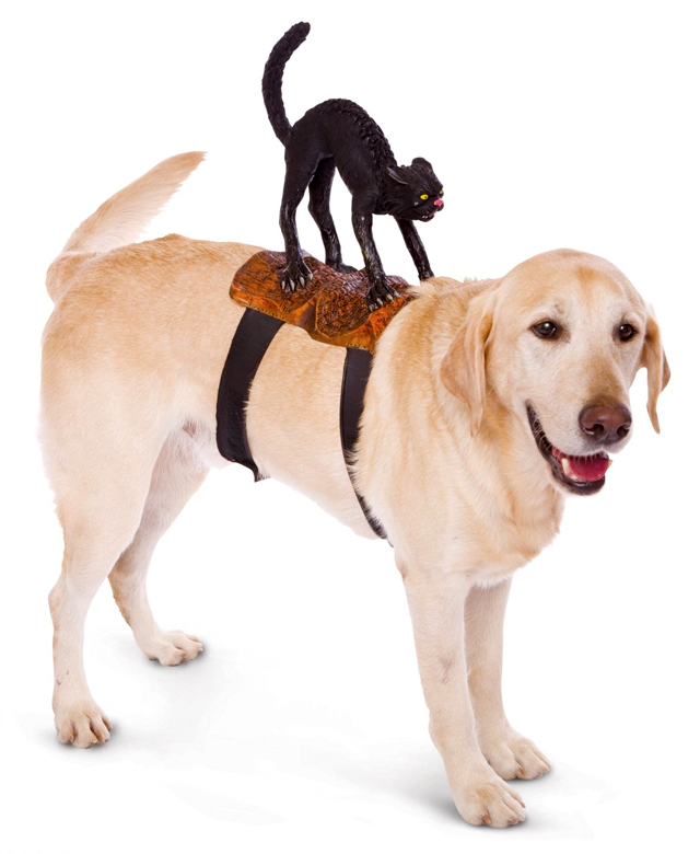 Dog Riders Cat Costume
