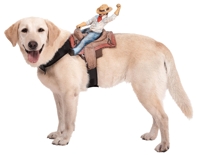 Dog Riders Cowboy Costume  sc 1 st  Laughing Squid & Humorous Dog Costumes That Look Like Things are Riding on Its Back