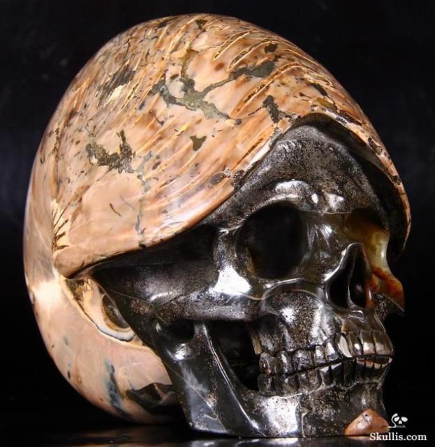 Ammonite-Fossil-Crystal-Skull-01