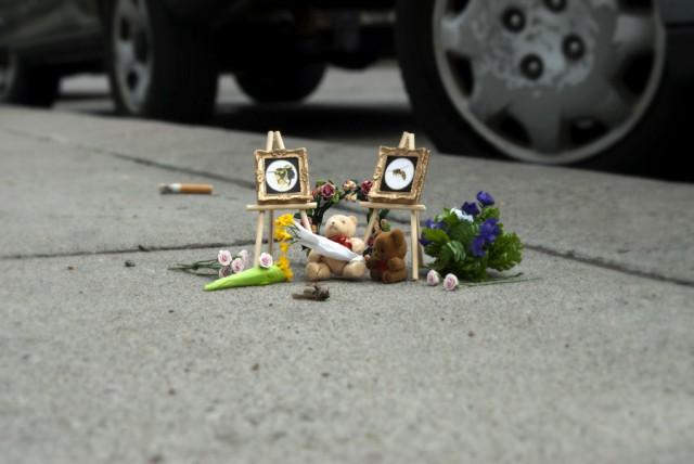 Bug Memorials by Carmichael Collective