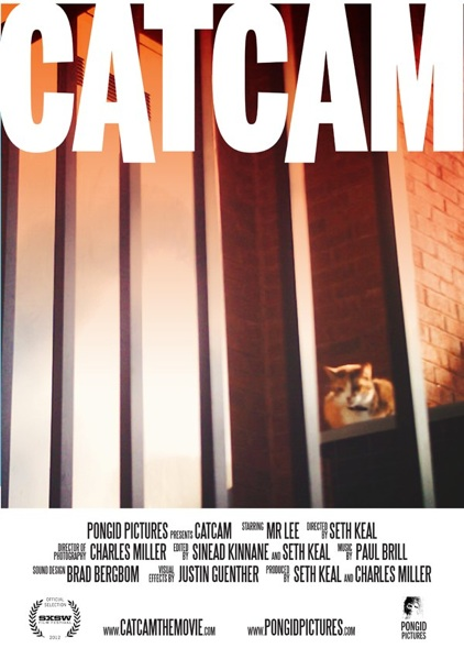 CatCam the Movie, A Short Film About the Adventures of a Tomcat
